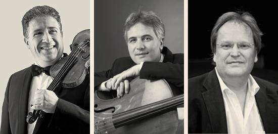 Marco Rizzi, Zoltan Paulich, Rudolf Meister